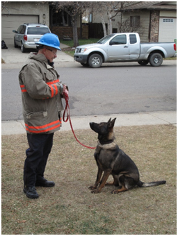 Fire Investigation Canine Service dog with trainer